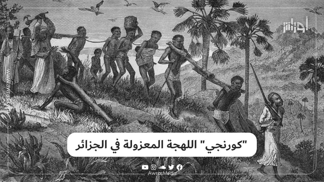 """""""كورنجي"""" اللهجة المعزولة في الجزائر"""