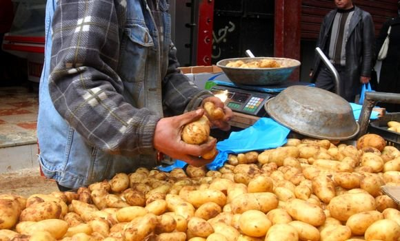 إخراج مخزون البطاطا لتموين الأسواق بهدف خفض الاسعار