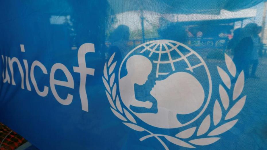 انتخاب الجزائر لعضوية المجلس التنفيذي لليونيسيف