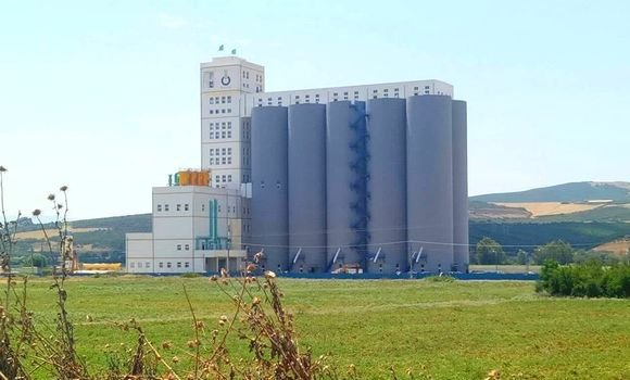 الجزائر تستورد كمية من القمح