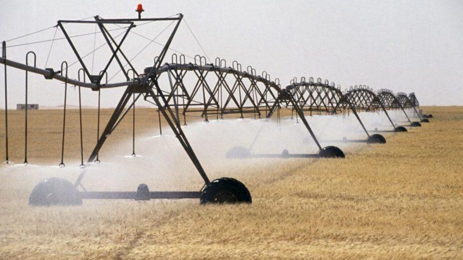 انخفاض انتاج الحبوب إلى 35 بالمائة بسبب الجفاف