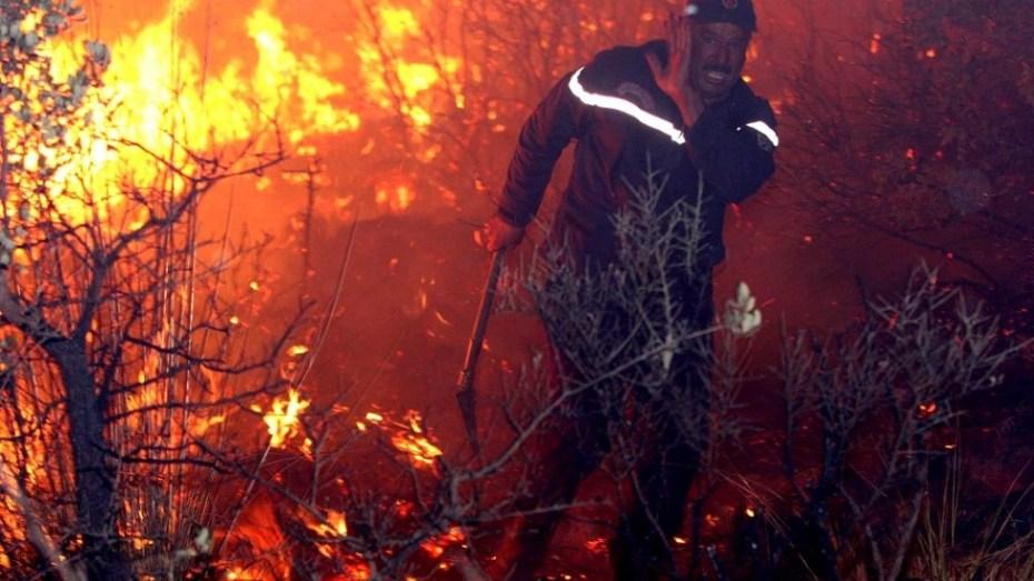 نشوب حرائق جبلية في 3 ولايات تخلف خسائر معتبرة في الغطاء النباتي