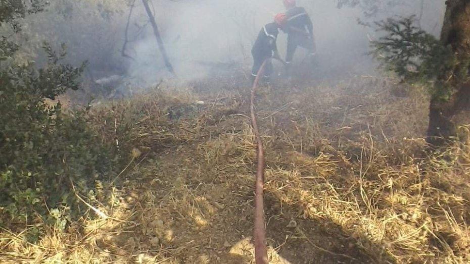 وفاة عون بالحماية المدنية أثناء إخماد حرائق جبال الشريعة
