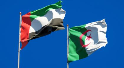 لماذا تأخرت الإمارات عن تسليم عبد المومن ولد قدور للجزائر وهل هي خطوة للطمأنة؟