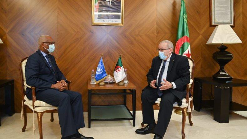 الأمم المتحدة تدعم مسار الجزائر في تحقيق المصالحة بمالي