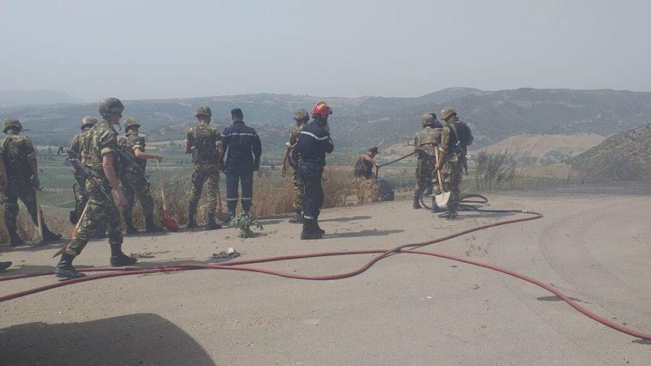 الحرائق تندلع مجددا في تيزي وزو