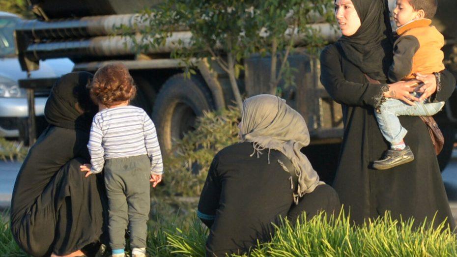 مسؤول حقوقي: الجزائر استقبلت 40 ألف لاجئ سوري