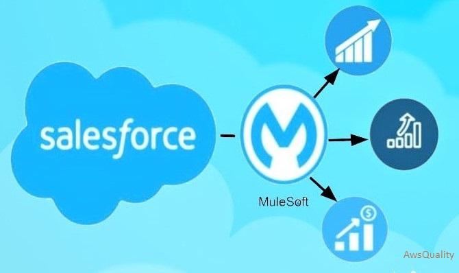 Salesforce and MuleSoft Integration 2