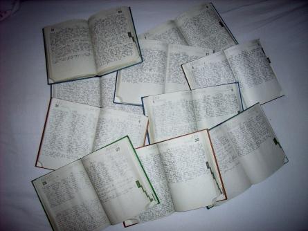 Tagebücher seit 2000
