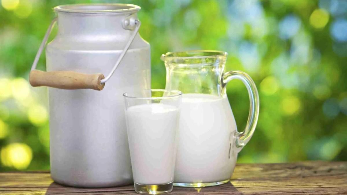 Latte fieno STG, una produzione lattiera del passato