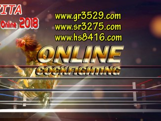 Link Alternatif Sabung Ayam Online 2019
