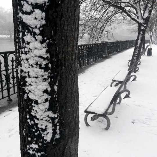 Alsovo nabrezi - Alsovo Riverbank