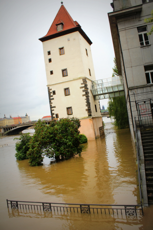 RadkaZKing_Floods_in_Prague2013
