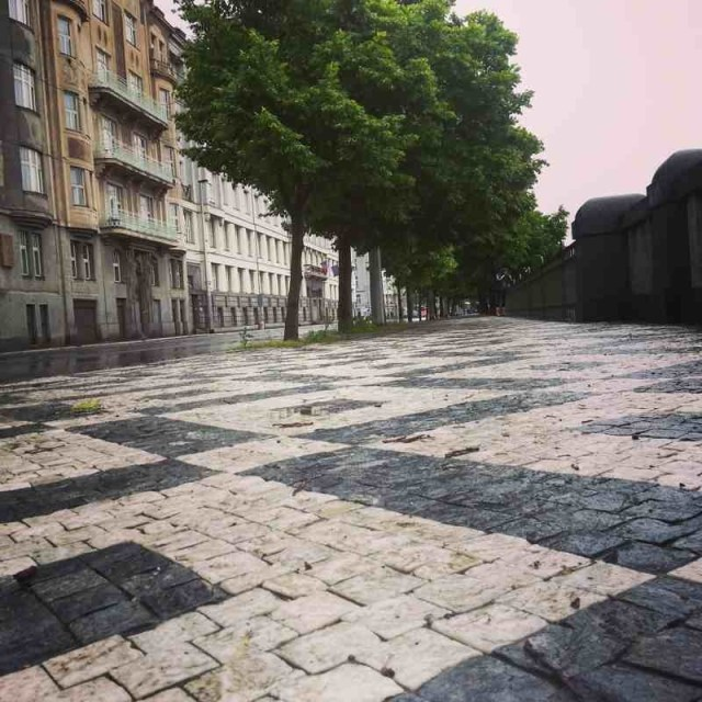 RadkaZimovaK_VltavaWalk_pavement