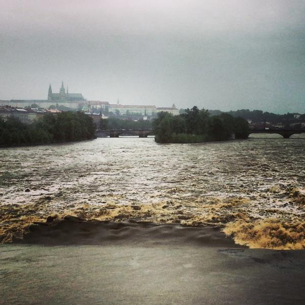 RadkaZimovaK_wild_Vltava_river_Prague