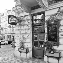CafeBarPropagandaPstrosovaby_RadkaZimovaKing2016