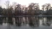 Wintertrees_reflection_intheriver_Vltava_Prague