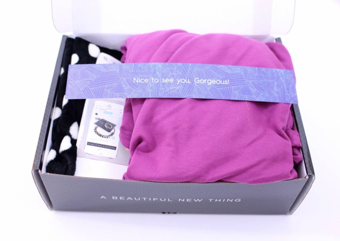 Wantable Intimates January 2016 2