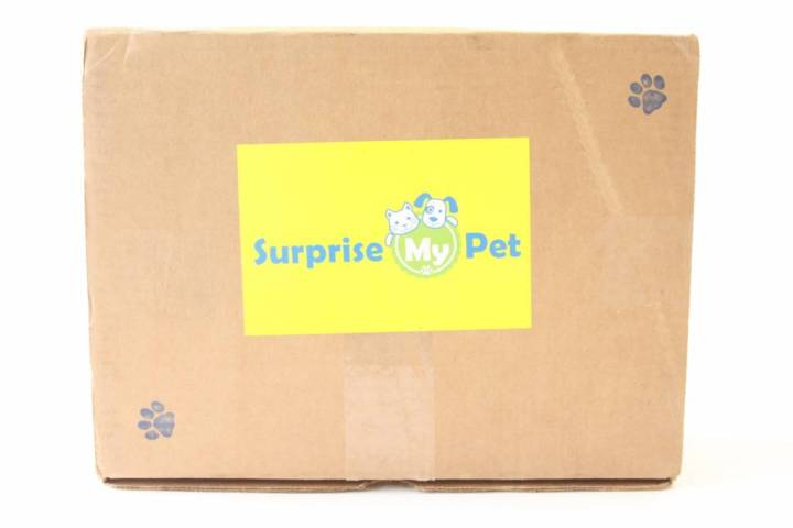 Surprise My Pet Review May 2016 1