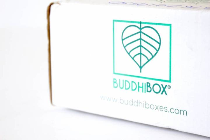 BuddhiBox Review June 2016 1
