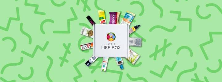 Little Life Box