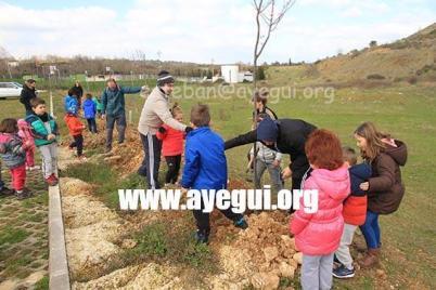 Dia_arbol_2016-Galerias-Ayuntamiento-de-Ayegui (2)