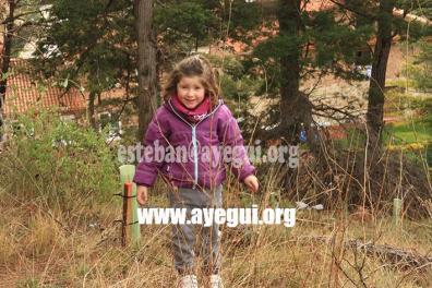 dia_del_arbol_2015-Galerias-Ayuntamiento-de-Ayegui (16)
