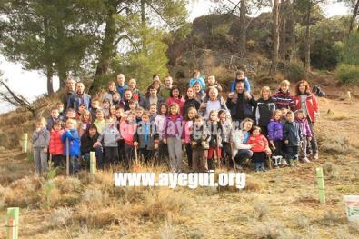 dia_del_arbol_2015-Galerias-Ayuntamiento-de-Ayegui (24)