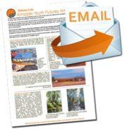 Email Order Form