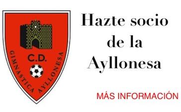 Socios Ayllonesa