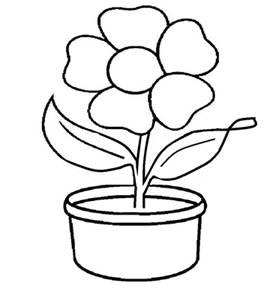 Gambar Bunga Di Pot Sketsa Koleksi Gambar Bunga