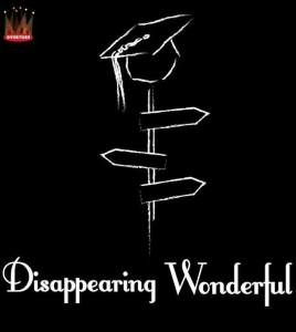 Dissappearing Wonderful