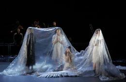 Swan Lake, Loch na hEala, Michael Keegan-Dolan, dance, contemporary dance, choreography, physical theatre, psychology, depression, Ireland, Irish, myth, folklore