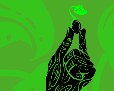 A green background and black hand holding up a black bean, sprouting a small green flower