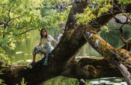 A person sits on a large tree branch which hangs over a lake, with lots of lush greenery in the background