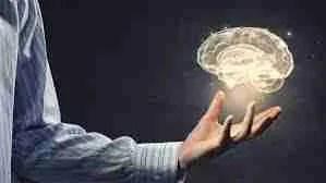 La conexión cuerpo y cerebro en el aprendizaje