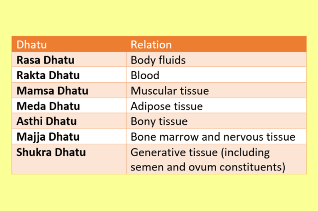Sapta Dhatu in Ayurveda (Seven Types of Tissues) | Ayur Times