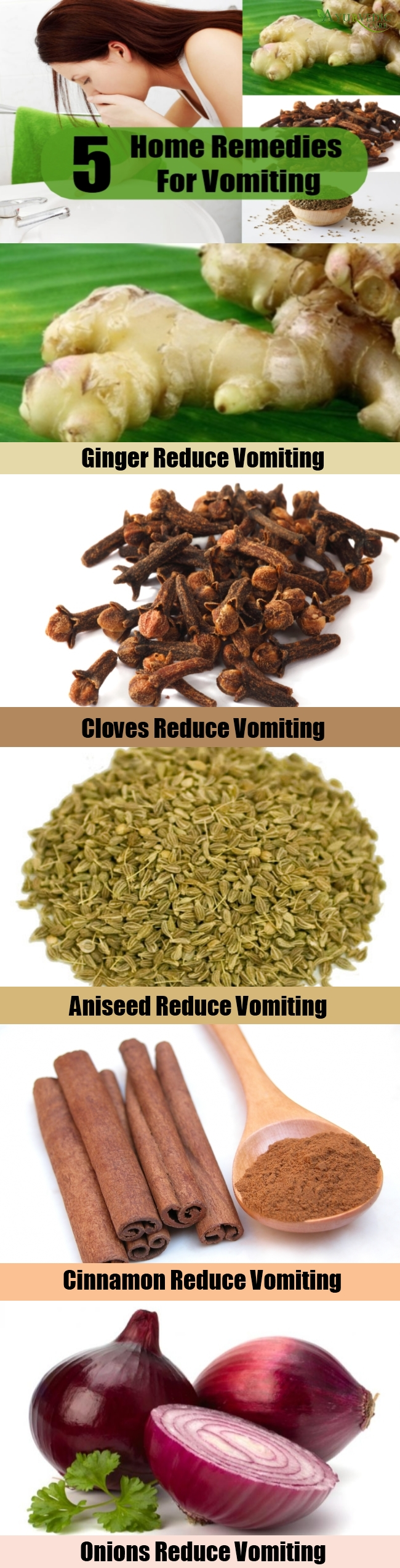 5 Best Home Remedies For Vomiting