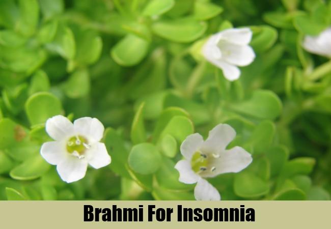 Brahmi For Insomnia