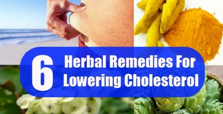 Herbal Remedies For Lowering Cholesterol