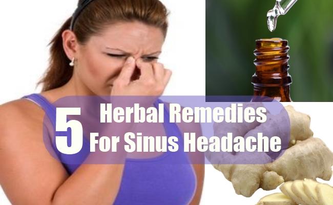 Herbal Remedies For Sinus Headache