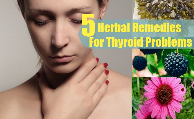Herbal Remedies For Thyroid Problems