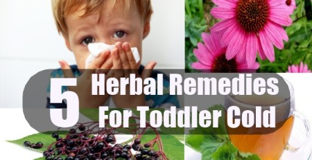 Herbal Remedies For Toddler Cold