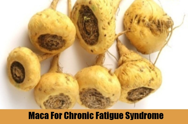 Maca For Chronic Fatigue Syndrome