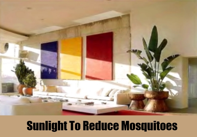 how to get rid of mosquitoes under carport