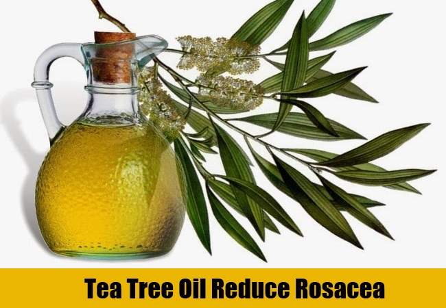 Tea Tree Oil Reduce Rosacea