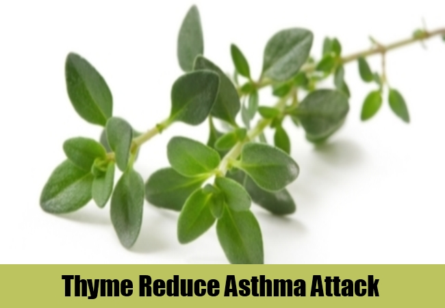 Thyme Reduce Asthma Attack