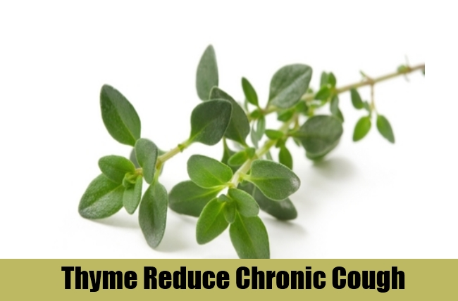 Thyme Reduce Chronic Cough