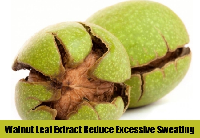Walnut Leaf Extract Reduce Excessive Sweating