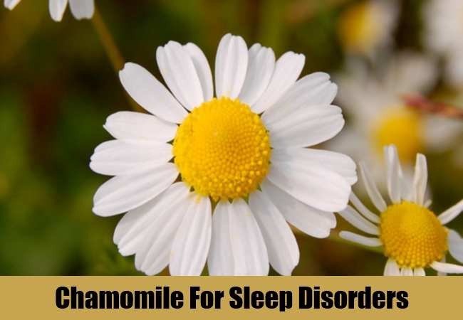 Chamomile For Sleep Disorders